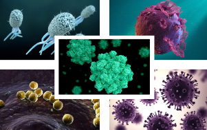 5 different pathogens under a microscope